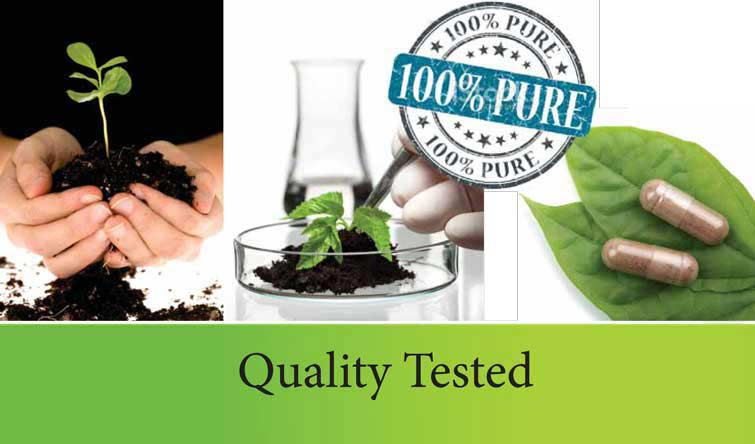 Dr. Clarks specifications 100% pure quality testing in US cGMP lab
